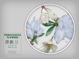 PngPack #18 flowers by ahui1107 by ahui1107