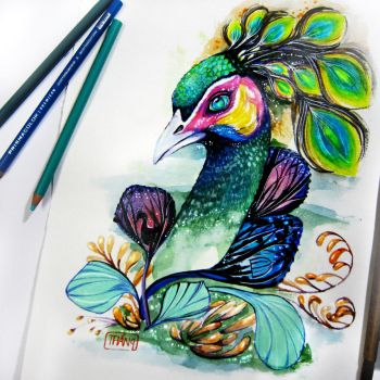 the peacock. by WinLeAnh