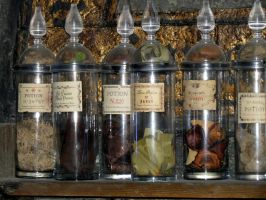 potions class room  hogwarts potion bottles by Sceptre63