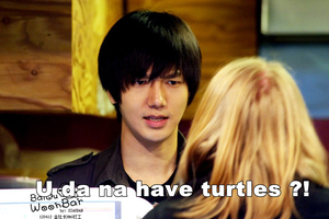 Yesung: U da na have turtles?! by bloodplusrocks
