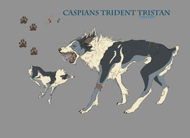Caspians Trident Tristan by ElysianImagery