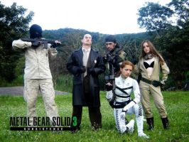 Metal Gear 3  group by Raurus