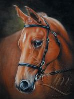 Chestnut Horse Folly by LouiseMarieFineArt