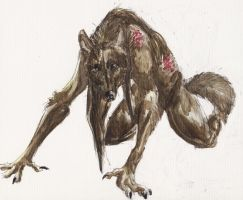Baine Wolf by Hyourin