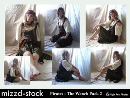 Pirates - The Wench Pack 2 by mizzd-stock