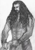 Thorin by Marin1233