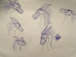 Wings of Fire Sketches: Icewing headshots by Iron-Zing