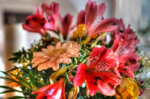 flowers hdr by sys66