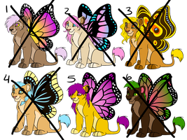 Adopt Butterflions by Magicionary