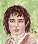 Frodo by LoonaLucy