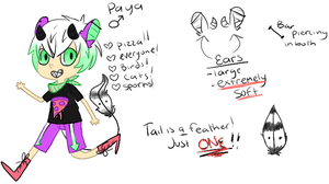 Paya reference by 6t9me