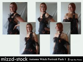 Autumn Witch Portrait Pack 1 by mizzd-stock