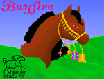 Bayfire spring mini show by breyercrazy