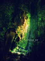 Forest Elf by flina
