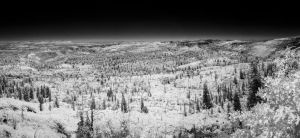 Lava Point Panorama in Infrared by eprowe
