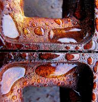 inclined to rust....... by shotsfiredimagedown