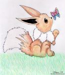 Eevee and a Butterfly by Kitsuraki
