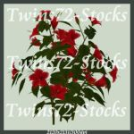 195-Twins72-Stocks by Twins72-Stocks
