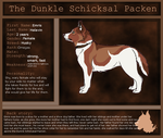 dunkle schicksal packen   Emris by blueshinewolfstar1
