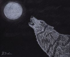 Wolf howl by AlyssasART