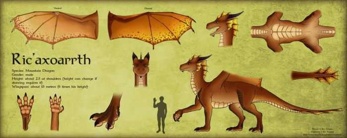 Reference Sheet - Ric'axoarrth by RicSimane