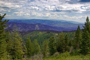 Above Bogus Basin by bimjo