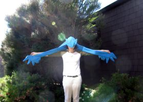 Articuno Scoodie by SPPlushies