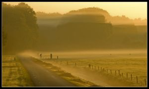 Walking on a magic morning by jchanders