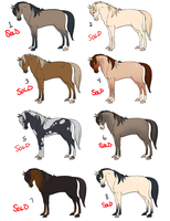 Horse Adoptables CLOSED by NatAsplund