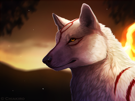 Amaterasu by Chiakiro