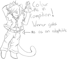 Colour compition by Shyeda