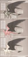 Reference - Dutch Angel Dragon Anatomy by TwilightSaint