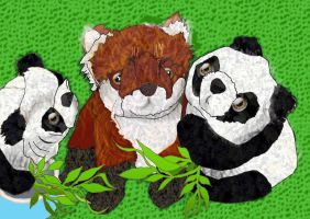 Foxy with Pandas foxes dont eat bamboo by merearthling