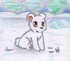 A baby polar bear by davidcool1989