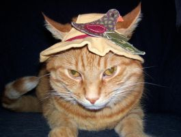 Cat In Hat 1 by Rorschach94