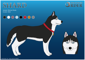 Shard The Siberian Husky by Dracorum-Order