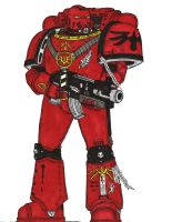 Tactical Marine, 72nd Company Blood Angels. by terraluna5