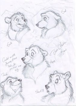 Bear sketches by SilverDeni