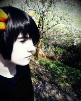 Sollux Cosplay by Arseniks