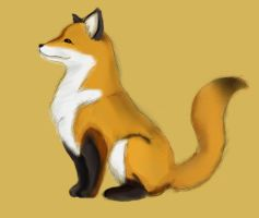 Proud Fox by InvisibleDeath