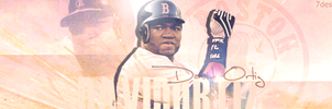 David Ortiz Signature by 7desires