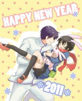 Happy New year 2011 by neng-neng