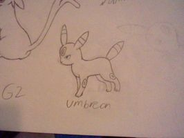 Umbreon Sketch by UltimaCreations