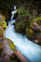 Avalanche Creek by StevenDavisPhoto