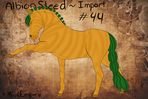 #44 AlbionSteed Import by MiusEmpire