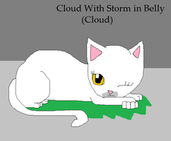 Random Page-Cloud With Storm by skyclan199