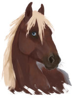 Astrasza Bust(fixed) by equusamor
