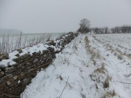 Snow Covered Drystone Wall 01 by fuguestock