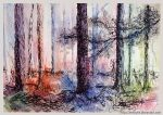 Forest by Zenthylle