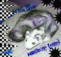 Hardcore Ferret pop art by Re-Alise